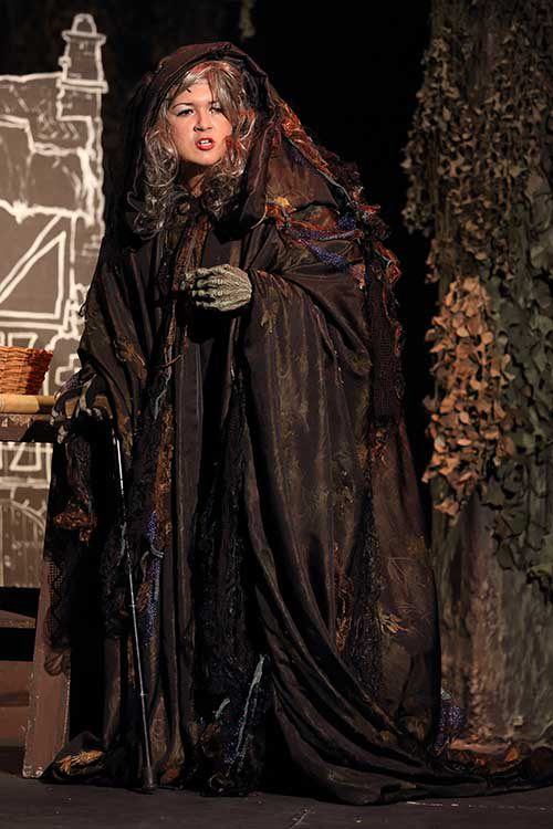 Wicked Witch. Scene from Into The Woods